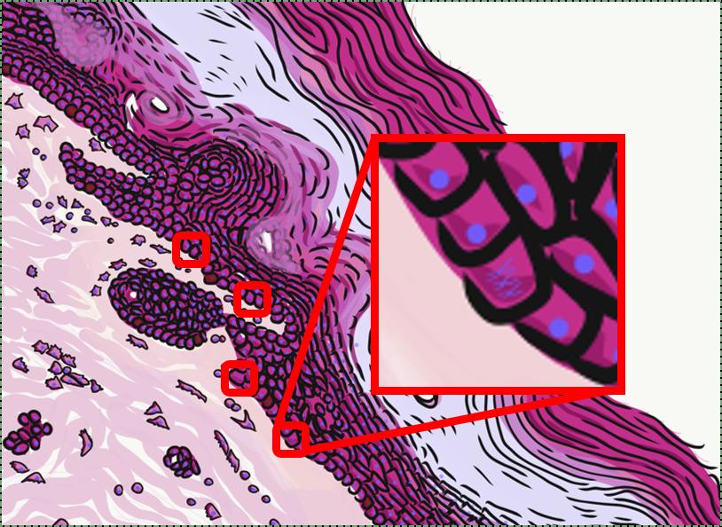 illustration of stem cells