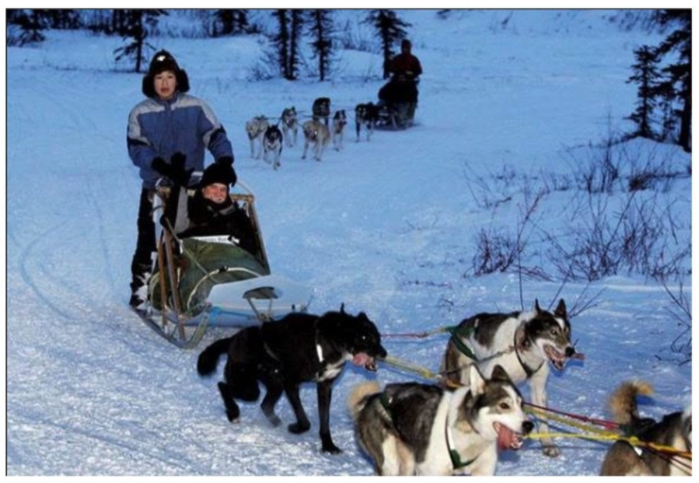 Photograph of a dogs pulling a dogsled with people on it.