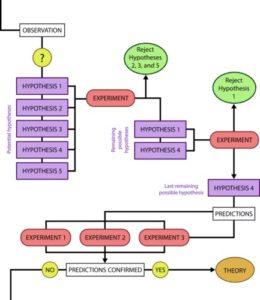 more complex flowchart of the scientific method