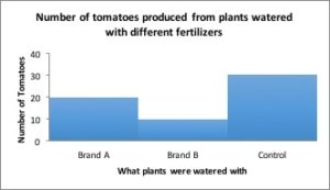 bar chart showing number of tomatoes grown with different fertilizers. Brand A grew 20 tomatoes. Brand B grew 10 tomatoes. The control plant grew 30 tomatoes.