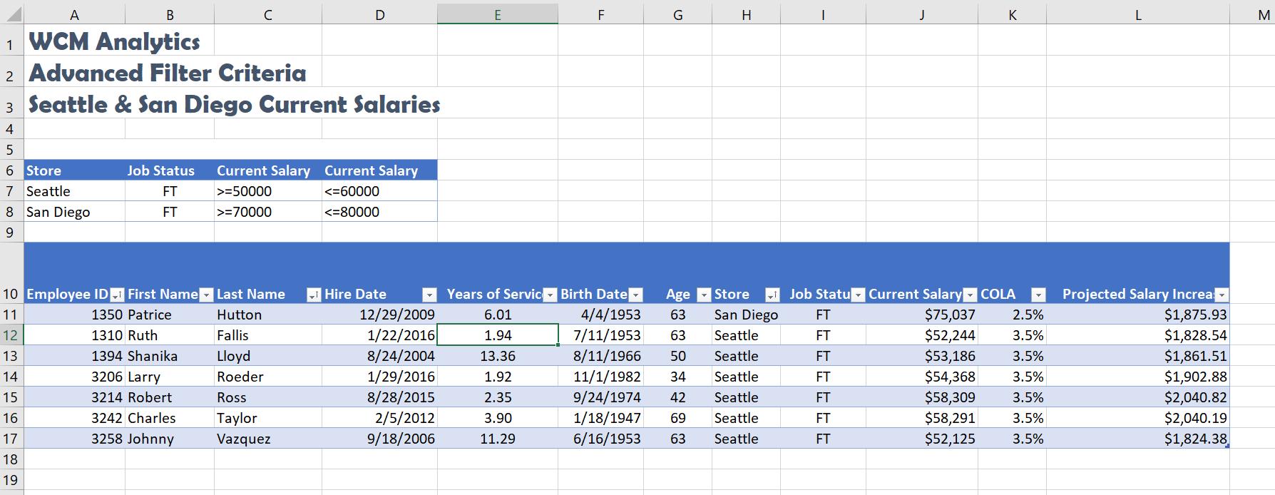 Advanced Filter Table Solution Screenshot
