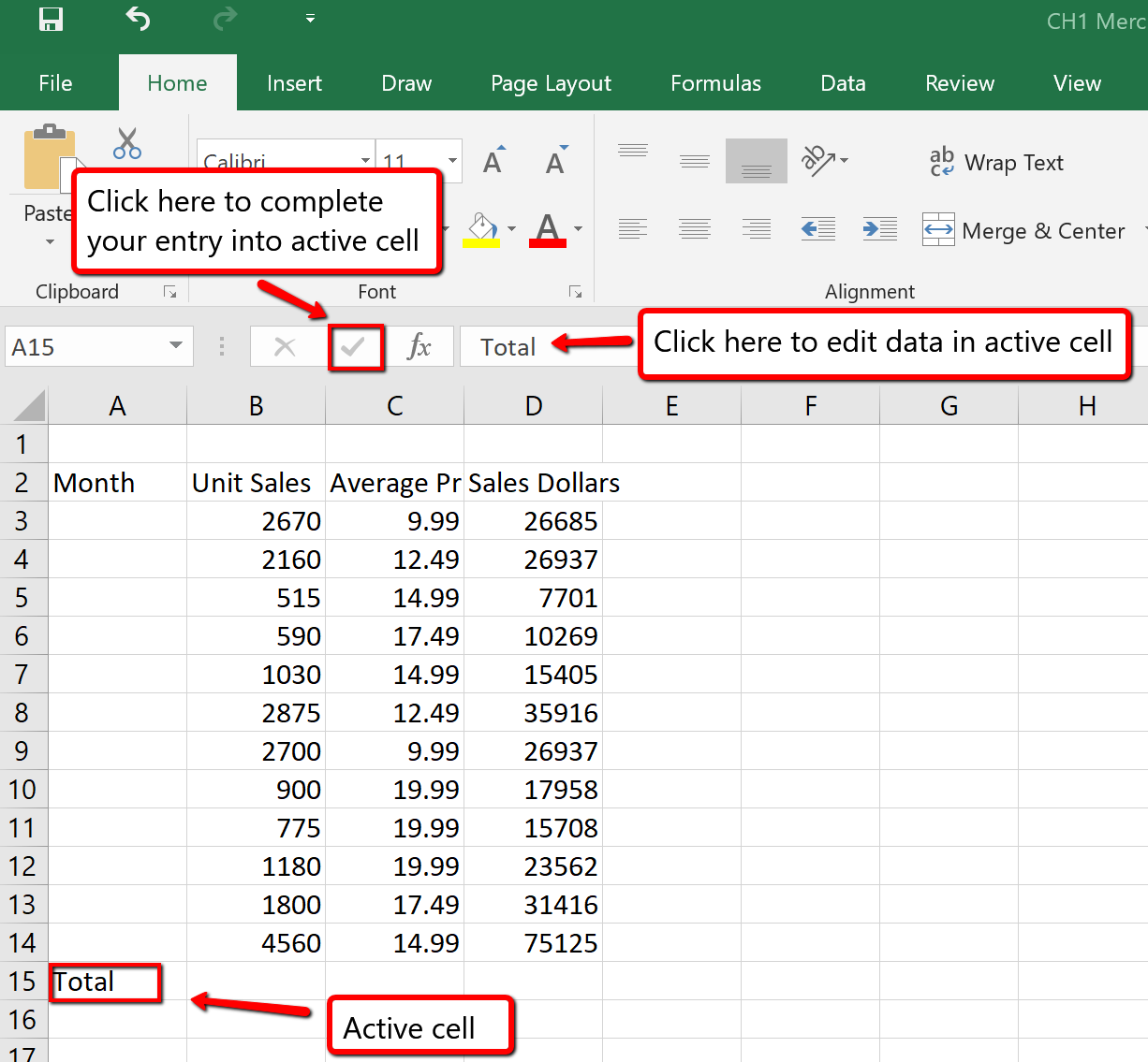 "Checkmark left of formula bar is highlighted and ""Total"" is typed in formula bar. ""Total"" appears in active cell A15."
