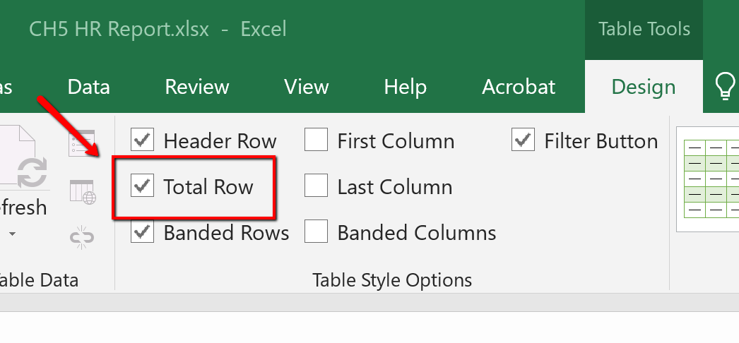 Screen Shot of the Total Row check box option