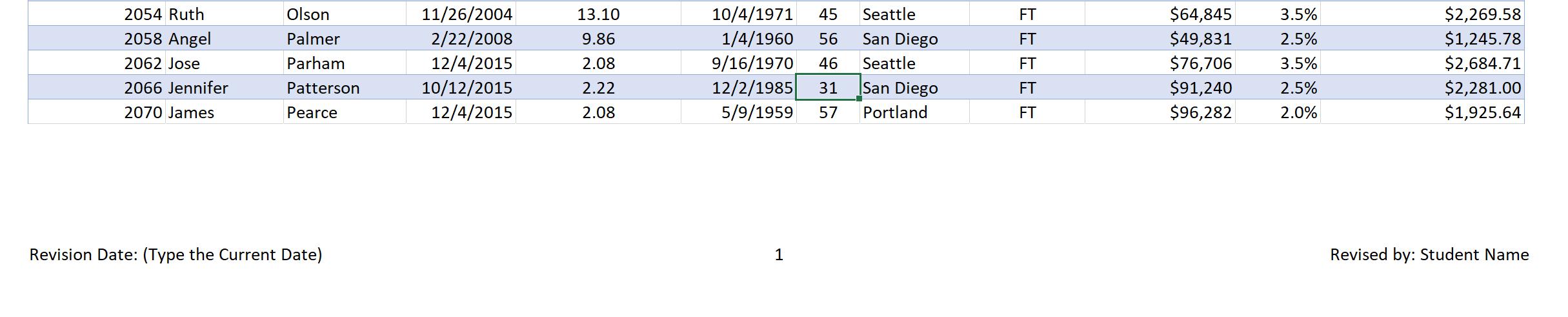 Screenshot of the Footer section in the EmployeeData sheet
