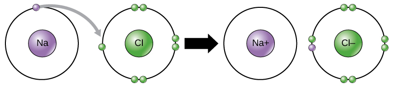 Chlorine donates an electron to sodium.