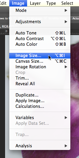 View of the Photoshop® Image menu, with Image Size option highlighted.