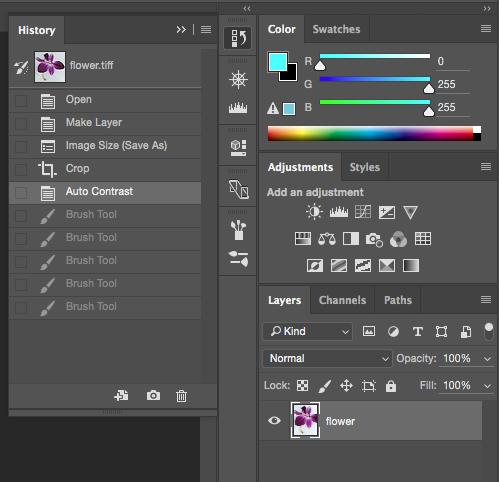 Screencapture showing Adobe® Photoshop® History panel