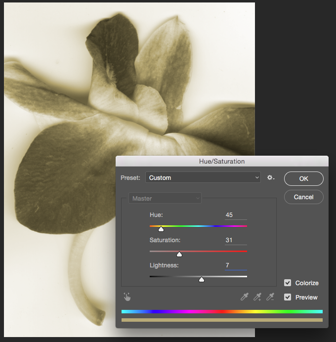 Screencapture showing the Hue/Saturation adjustment dialog box over a colorized image of a flower.