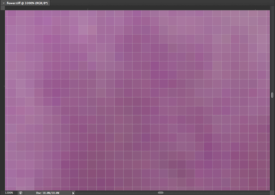 Zoomed in view of image pixels.