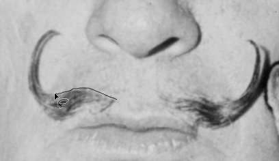 Screen capture showing lasso tool being used to select part of Dali's mustache.
