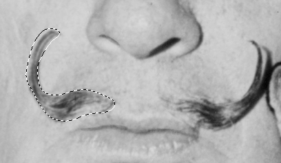 Completed selection around Dali's mustache.