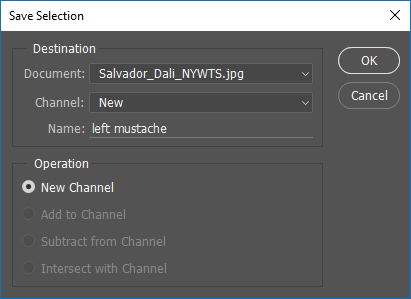 Screen capture of Save Selection dialog box.