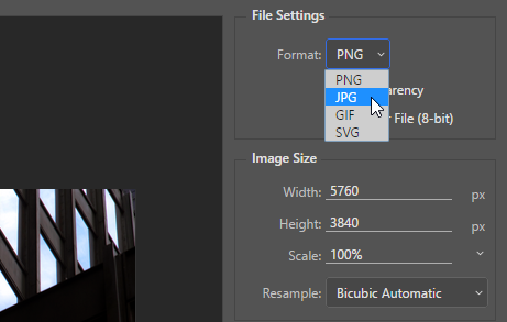 Screen capture showing how to set the Format for the optimized image.