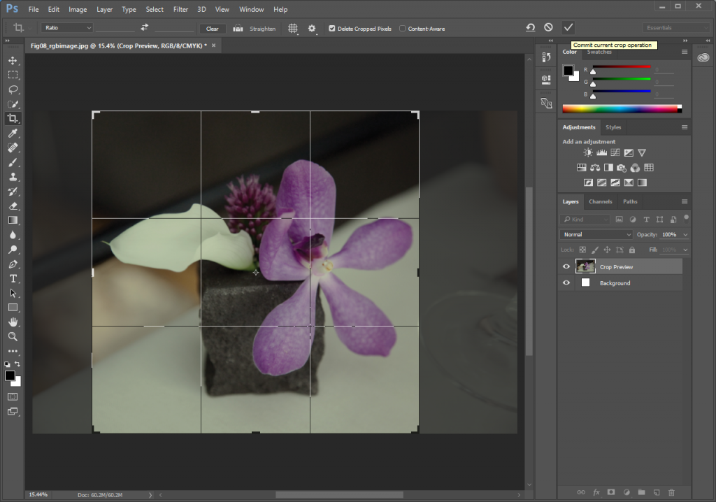 Screencapture showing photo of a purple flower opened in Photoshop®. The Crop Area is active around a portion of the image.