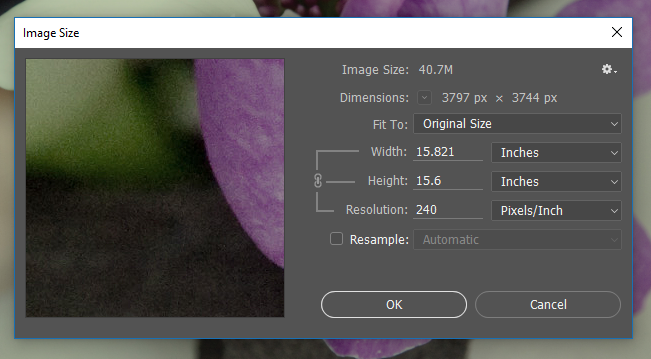 Screen capture showing the Photoshop® Image Size dialog box with image resolution set at 240 pixels/inch.
