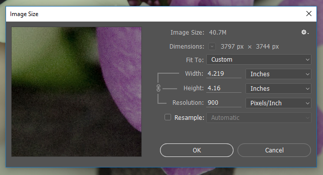 Screencapture of the Photoshop® Image Size dialog showing changes to the image's printed width and height when Resolution is adjusted to 900 pixels/inch.