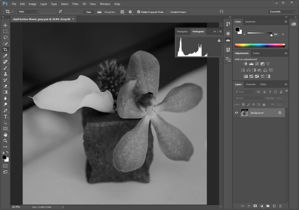 Screencapture of greyscale flower photo open in Adobe® Photoshop® with the Histogram panel displayed.