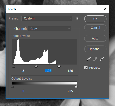 Screencapture of the Photoshop® Levels Adjustment dialog box, consisting of a histogram and slider controls to adjust input/output levels.