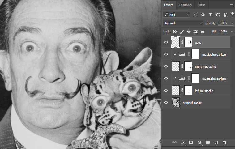 Copy of Dali's eyes positioned on cat's face.