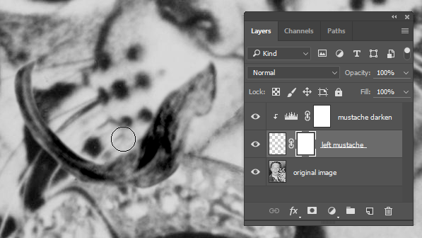 Screen capture showing brush painting into layer mask to clean up mustache edges.