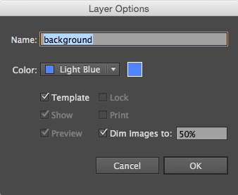Layer Options dialog box