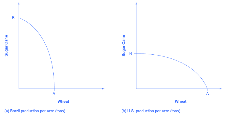 """This graph shows two images. Both images have y-axes labeled """"Sugar Cane"""" and x-axes labeled """"Wheat."""" In image (a), Brazil's Sugar Cane production is nearly double the production of its wheat. In image (b), the U.S.'s Sugar Cane production is nearly half the production of its wheat."""