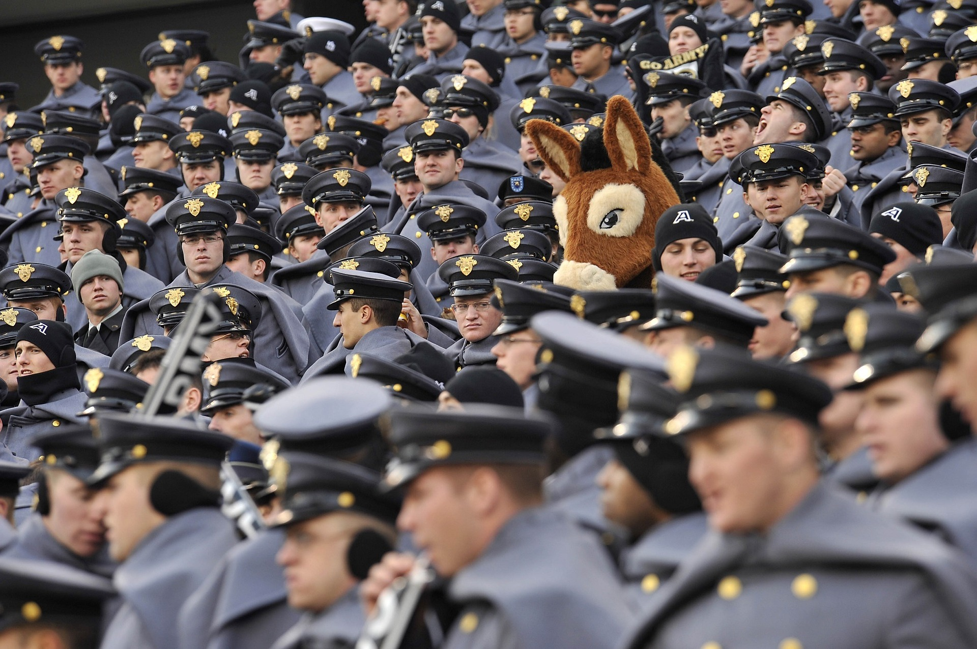 crowd of identically uniformed military personnel and one person in donkey costume in the middle