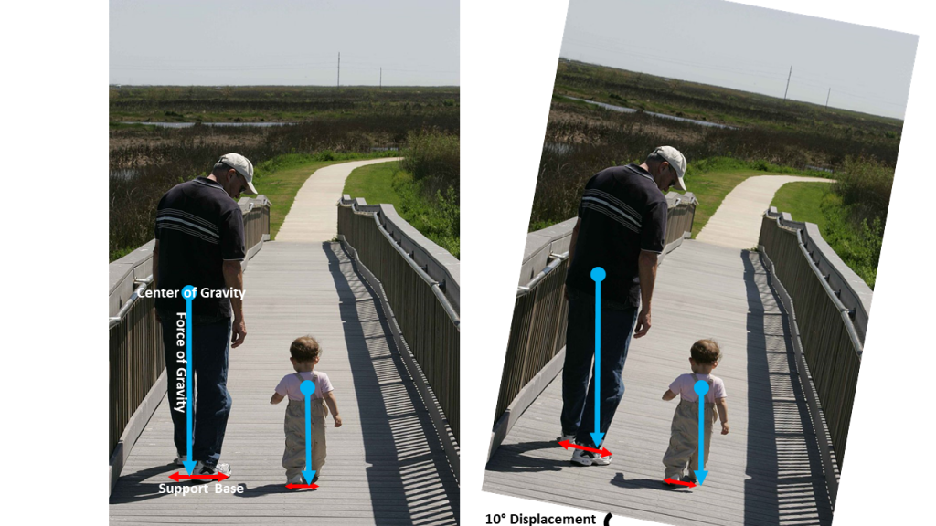 Left: An adult and toddler walk side-by-side. The gravitational force points downward from the center of gravity of the adult, located at their waist. The force of gravity passes through a line connecting the two feet to indicate the support base width. The gravitational force on the toddler points downward from the center of gravity, located between the shoulder blades. The force of gravity passes through a line connecting the two feet to indicate the toddler support base width. Right: The same diagram is not tilted by an angle of 10 degrees. The force of gravity in each case still points straight down and for the adult still passes through a line connecting their feet to indicate the support base width. The gravitational force on the toddler no longer passes through a line connecting their feet to indicate the support base width.