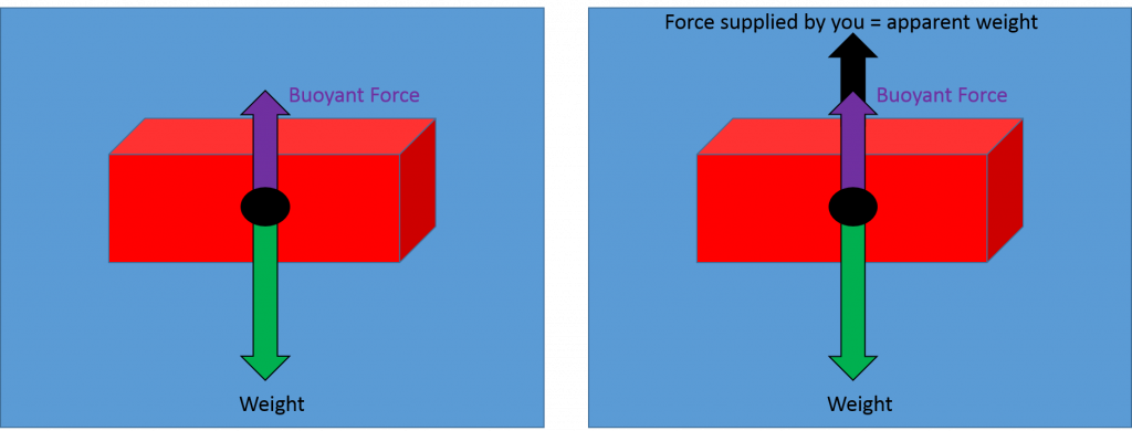 "The diagram on the left shows a brick with an arrow labeled ""weight"" pointing downward from its center. A shorter ""buoyant force arrow points upward. In the diagram on the right a second arrow points upward so that the total length of the upward arrows equals the length of the downward arrow. The new upward arrow is labeled ""force supplied by you = apparent weight"""
