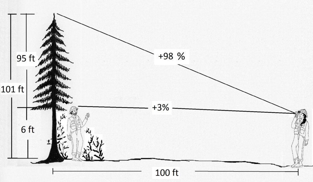 A partner is six feet tall. The base of the tree cannot be seen, so one can sight on the partner as the base, then add his six feet to the total height