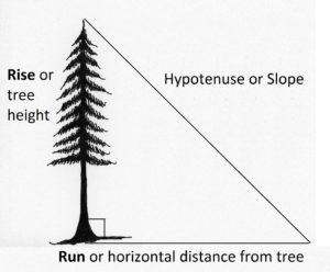 triangle showing tree height as rise and horizontal distance from tree as run