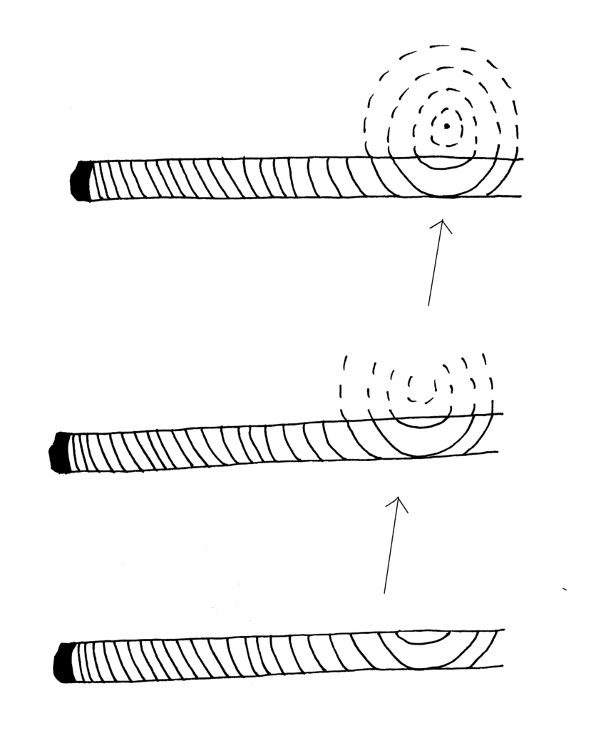 illustration showing a core sample that missed the pith by one year