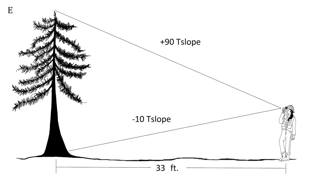 at a horizontal distance of 33 ft, reading to top is +90 Tslope; reading to stump is -10 Tslope