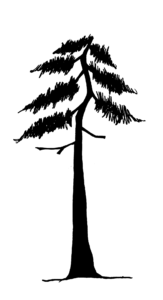 graphic of a tree with a broken top - top looks flat