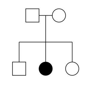 11d.simplepedigree