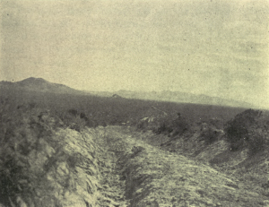 A faded photograph of the Oregon Trail, showing deep tracks left in the ground by wagons.