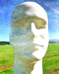 Human head sculpture in a field of grass seed