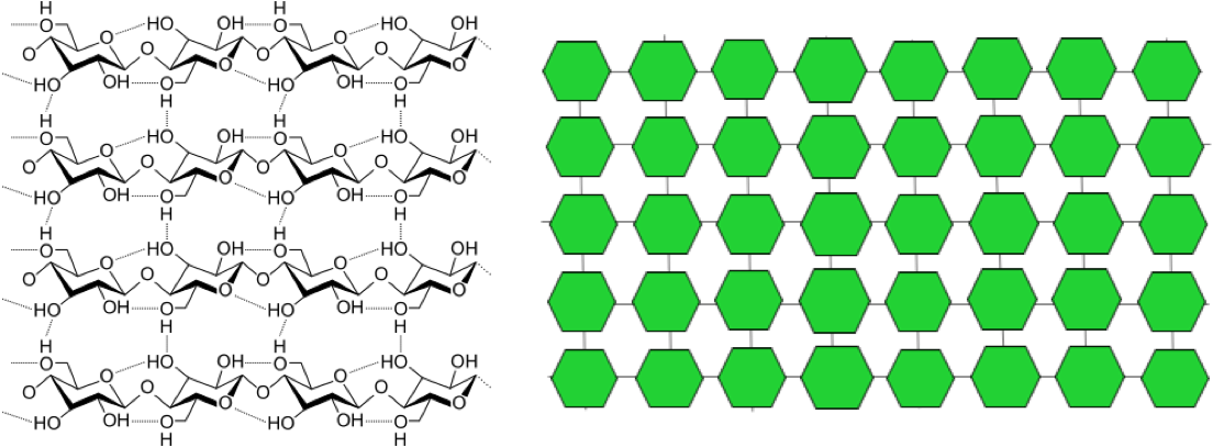 On the left, the chemical structure of cellulose, showing a total of 16 glucose units arranged in rows of 4 each, with hydrogen bonds linking them vertically, as in a grid. On the right, a simplified schematic of the chemical structure of cellulose, showing multiple green hexagons, each representing a glucose molecule, arranged in rows with lines linking them both vertically and horizontally, as in a grid