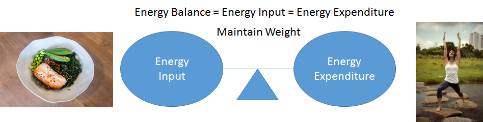 A balance scale showing energy input (salmon meal) equaling energy expenditure (someone stretching)
