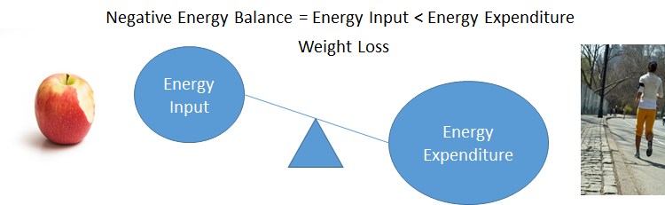 A balance scale showing larger energy expenditure (with someone running) and a smaller energy input (with an apple)