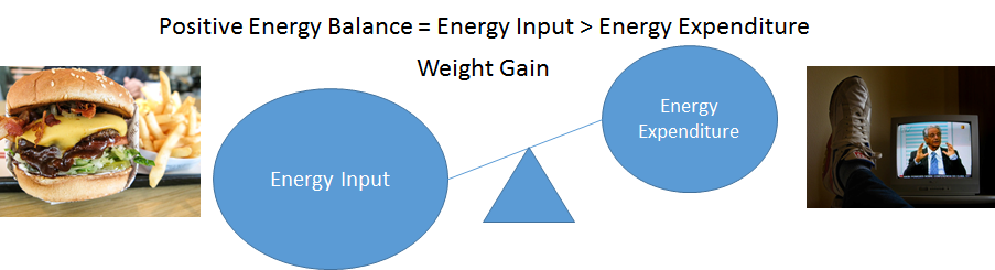 A balance scale showing larger energy intake (with hamburger and fries) and a smaller energy expenditure (with someone watching T.V.)