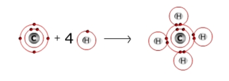 a molecule of methane is shown which is one carbon atom bonded to four hydrogen atoms. The methanols molecule allows carbon to have a full outer shell of 8 electrons since each hydrogen atom shares its electron.