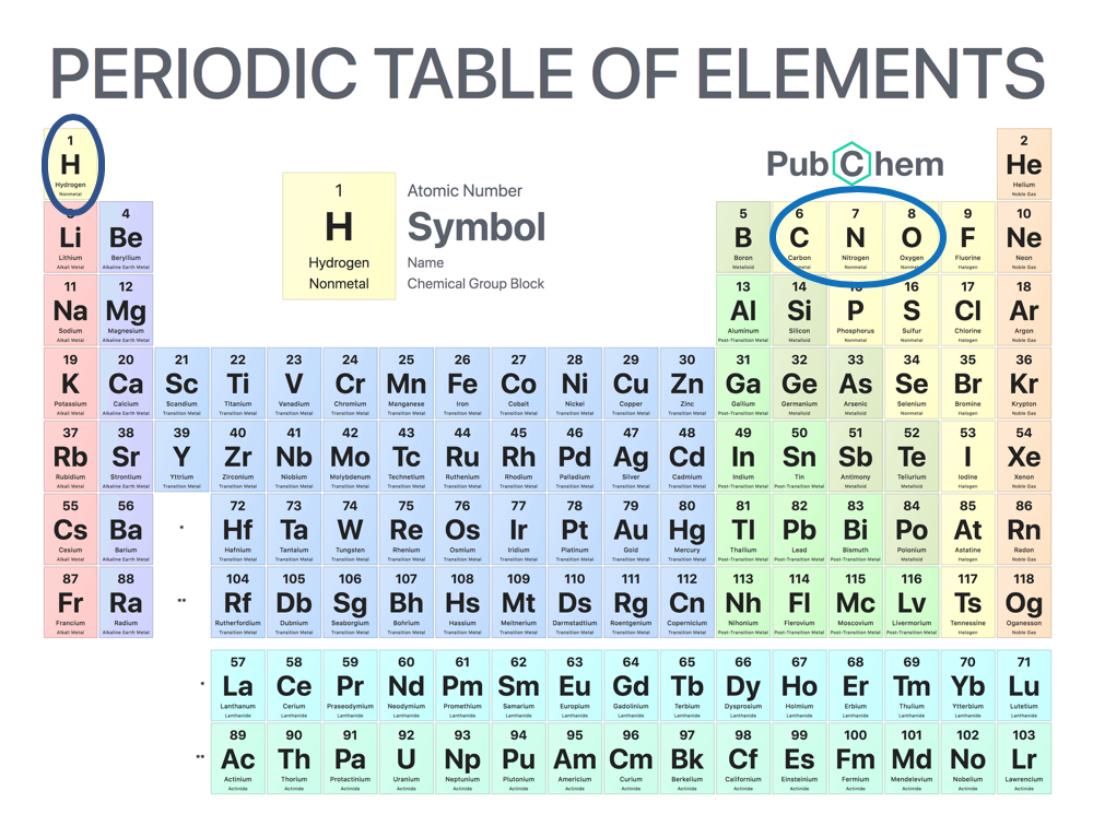 The periodic table shows the 100 different elements. Hydrogen, carbon, nitrogen, and oxygen are highlighted as they make up the bulk of all living matter.