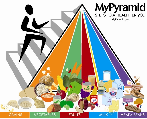 This graphic is a pyramid with a stick figure walking up a set of stairs on the side of the pyramid to represent the activity that is recommended. The front of the pyramid is sectioned into 6 different sections to represent the different food groups. Orange is the largest section and represents grains. A variety of foods are pictured in this group like rice, bread, and crackers. The next section is green for vegetables. Broccoli, carrots, and potatoes are a few foods pictured. The red section represents fruits, and raisins, juice and fresh fruit are pictured. A tiny yellow section is dedicated to fats and oils. The blue section is milk and has different dairy products like cheese and yogurt pictured. The last section is purple and is the meat and bean group. The biggest section is grains followed by dairy, vegetables, fruit, meat and beans and then oils.