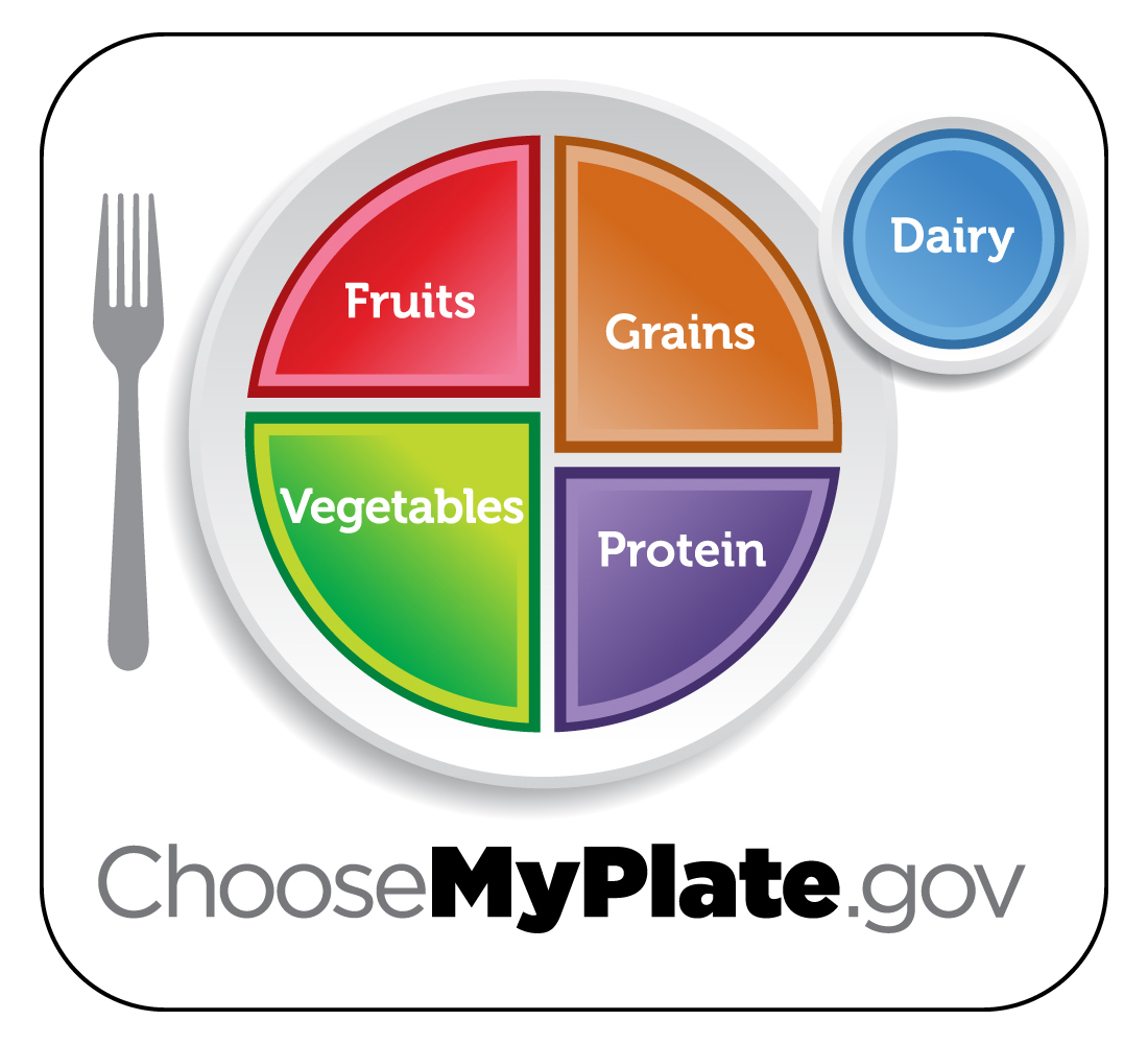 A plate which is divided into 4 parts. Half of the plate is Fruits and Vegetables (with the vegetables being a slightly larger segment). And the other half is grains and protein, with the grains being a slightly larger segment. Dairy is shown on the side in a small circle, representing a cup.