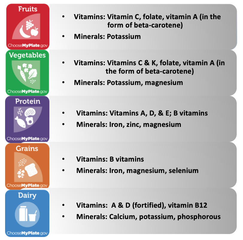 A chart depicts each food group of MyPlate and lists which vitamins and minerals are commonly included in that food group. Fruit: Vitamins include vitamin C, folate, vitamin A (in the form of beta-carotene). Minerals include potassium. Vegetables: Vitamins include vitamins C and K, folate, vitamin A (in the form of beta-carotene). Minerals include potassium and magnesium. Protein: Vitamins include vitamins A, D, and E and the B vitamins. Minerals include iron, zinc, and magnesium. Grains: Vitamins include B vitamins. Minerals include iron, magnesium, and selenium. Dairy: Vitamins A and D (fortified) and vitamin B12. Minerals include calcium, potassium, and phosphorous.