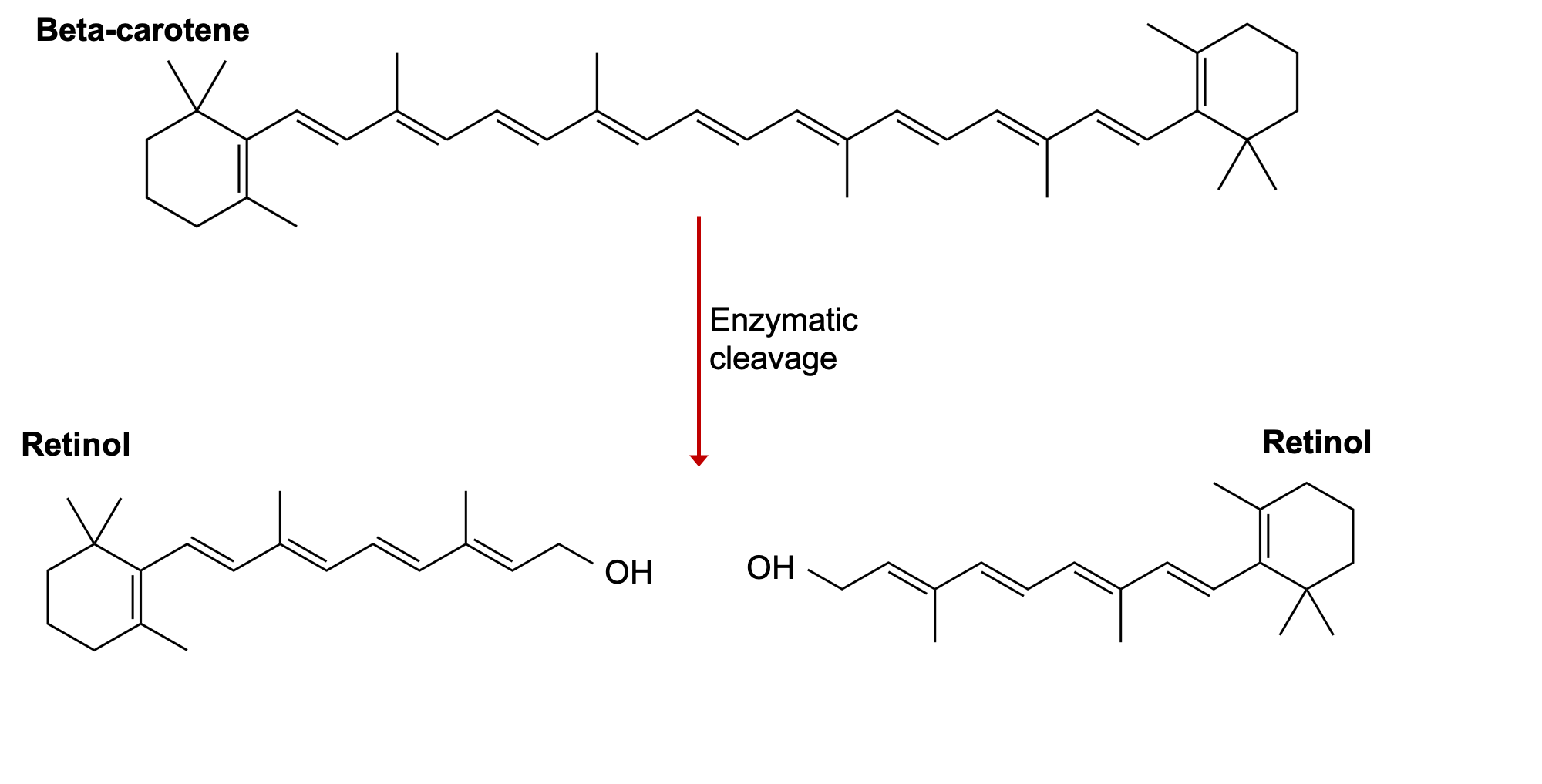 The image shows the skeletal formula of beta-carotene and how two molecules of retinol are formed when it is cleaved in half by an enzyme.