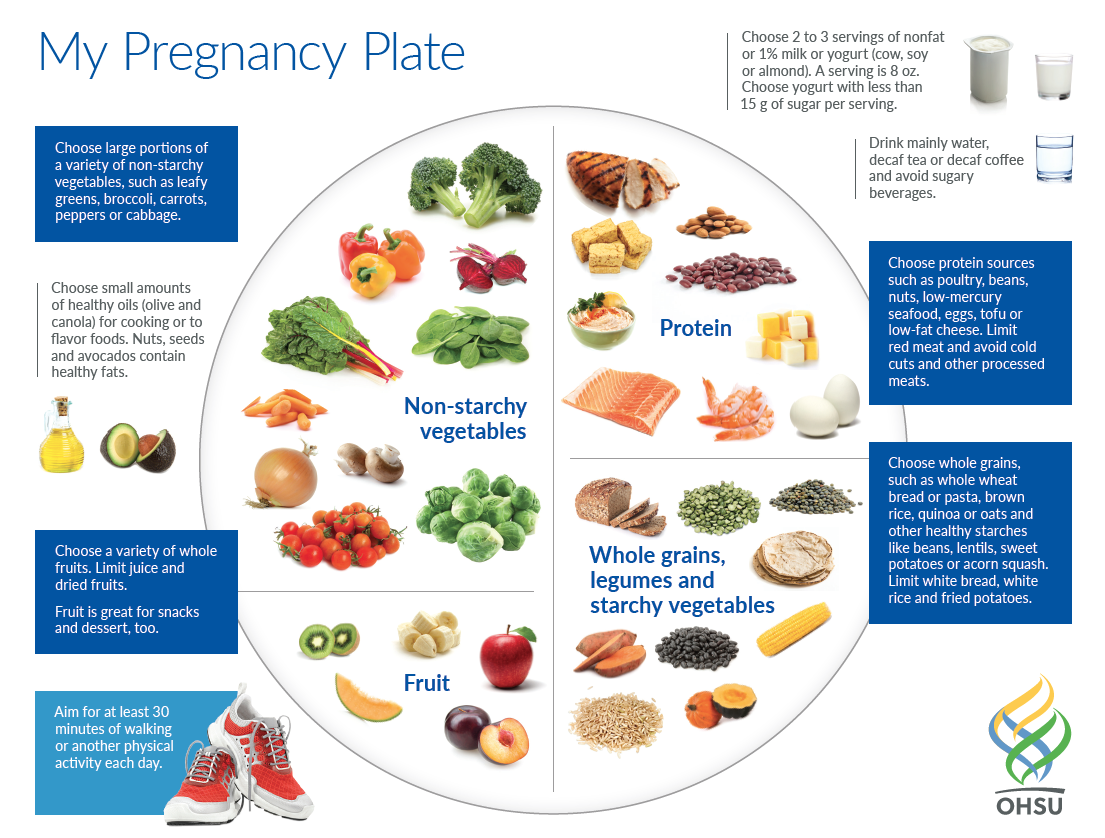 A plate image shows an ideal pregnancy diet. The largest portion, about one-third of the plate, is non-starchy vegetables. About one-quarter of the plate shows lean protein sources, and another one-quarter shows whole grains, legumes, and starchy vegetables. A smaller fraction (about one-sixth) shows whole fruits.