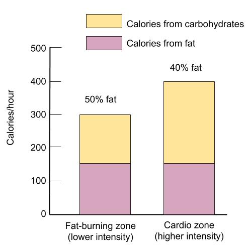 A chart depicts the amount of calories coming from carbohydrate and from fat depending on the intensity of the exercise. The cardio zone at a higher intensity uses more carbohydrate than fat compared to the fat-burning (lower intensity) zone, but the cardio zone also burns more total calories per hour.